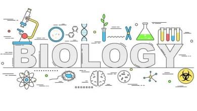 HSC Biology Assignment Answer 2021