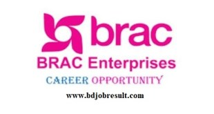 BRAC Enterprises