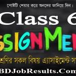 Class 6 Assignment 2021