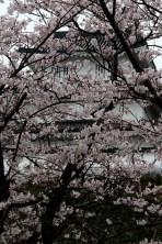 Shimabara Castle.