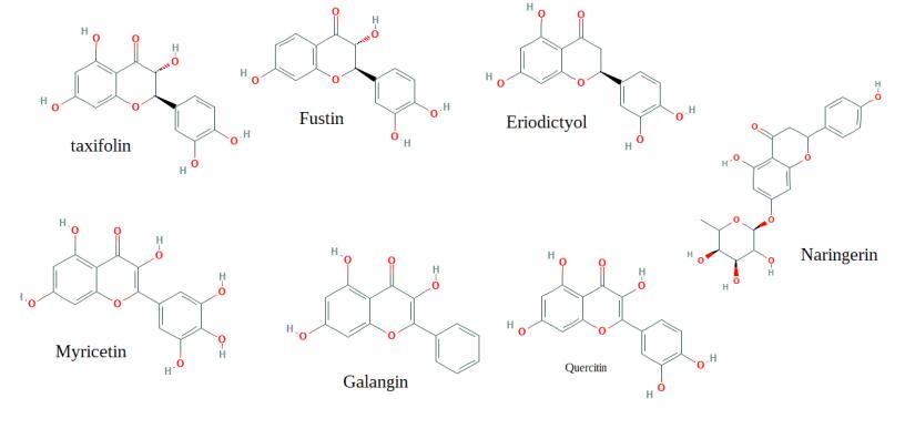 Pecan shell tea contains quercetin and derivatives.