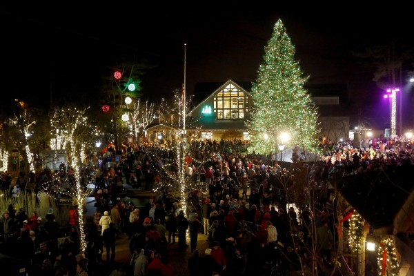Outdoor Christmas Tree L L Bean