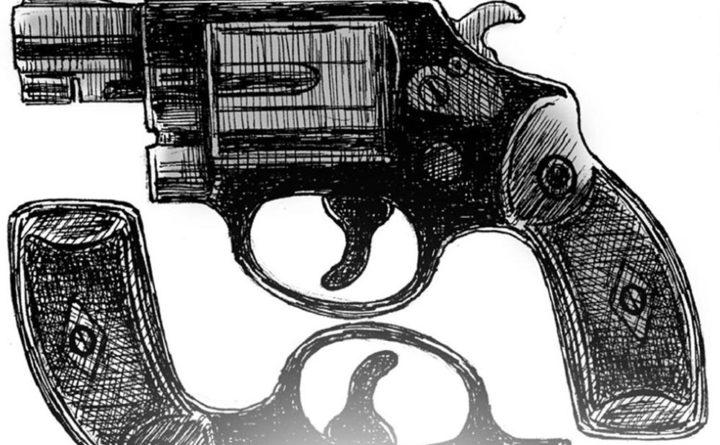 why banning handguns makes