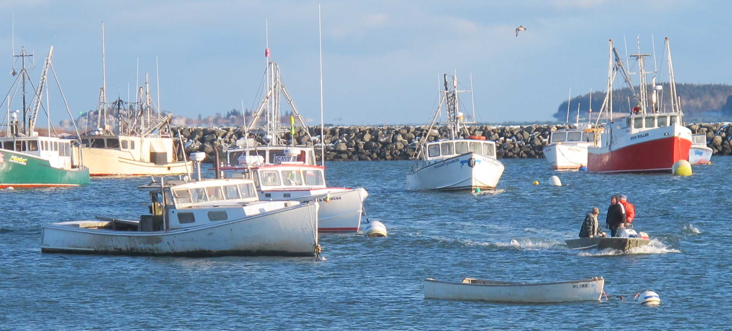 110m Fish Farm Would Mean Changes For Jonesport But Locals Hope Not Too Many