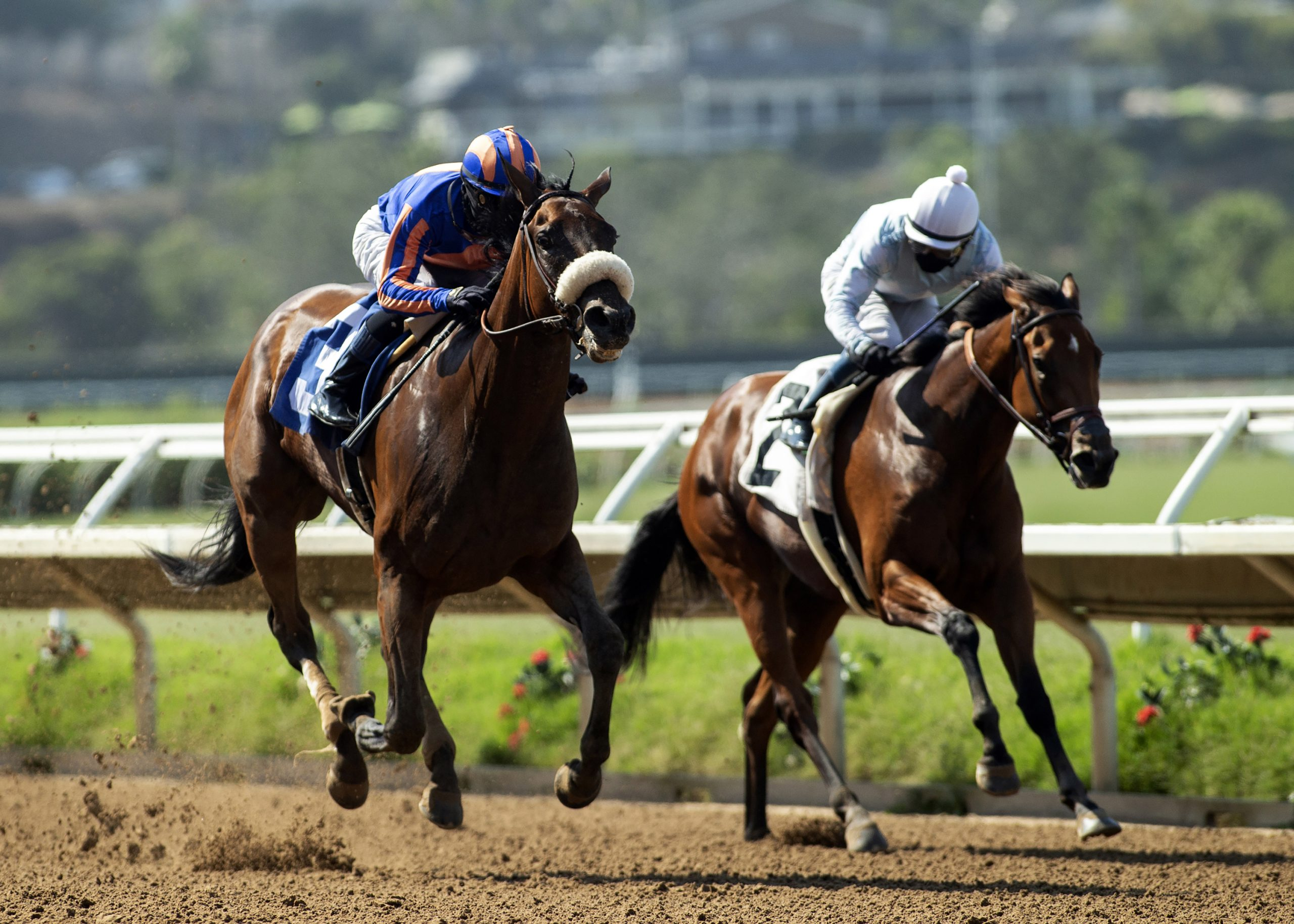 Mainers won't be able to bet on next weekend's Kentucky Derby
