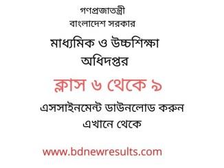 Assignment Syllabus Class 9, 8, 7, 6 NTCB Short Syllabus www.dshe.gov.bd