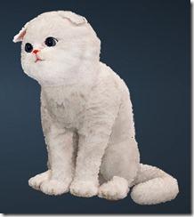 Gray Moon Cat front