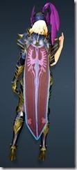 bdo-aker-guard-sorc-costume-3