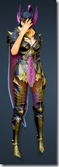 bdo-aker-guard-sorc-costume