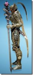bdo-aker-guard-wizard-full-2