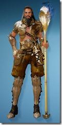 bdo-cantusa-wizard-costume-hide-helm