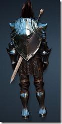 bdo-clead-warrior-full-3