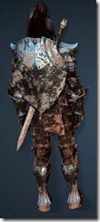 bdo-clead-warrior-med-dura-2