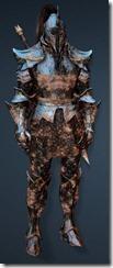 bdo-clead-warrior-med-dura