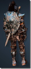 bdo-clead-warrior-min-dura-2