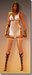 bdo-kibelius-ranger-costume