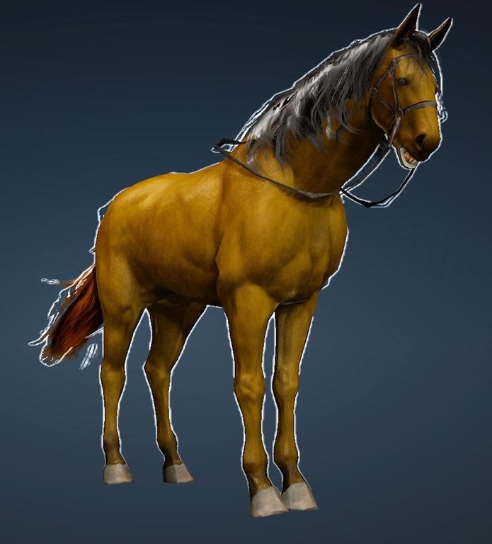 BDO Fashion   Tier 3 Horse (Black Desert Online)
