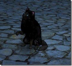 bod-tier-3-cat-2