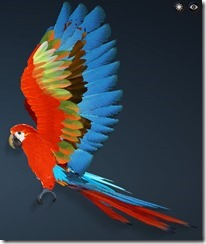 Scarlet Macaw Side