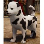[Tier 3] Shaggy Dog