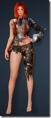 bdo-clead-costume-armor-min-dura