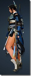 bdo-order-of-apricot-maehwa-weapon-costume-2