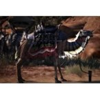 Camel Heavy