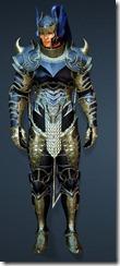 bdo-acher-guard-ninja-costume