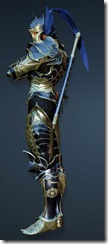 bdo-acher-guard-ninja-full-2