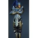 [Ninja] Acher Guard