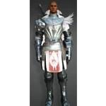 [Warrior] Delphe Knights Costume