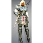 [Ranger] Delphe Knights Costume