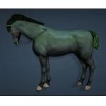 [Tier 5] Horse