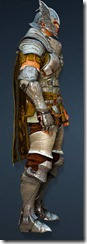 bdo-warrior-evergart-costume-2