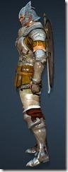 bdo-warrior-evergart-costume-weapon-2