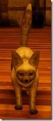 tier3-desert-fox-appearance-change-gray-4-6-v.myst-frontfacetall