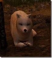 tier4-desert-fox-appearance-change-5-6-v.myst-frontlayingdown