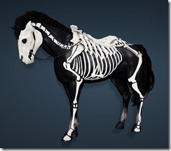 bdo-goss-horse-armor