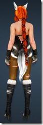bdo-gray-fox-costume-valkyrie-3