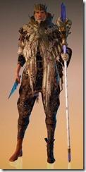 bdo-memory-of-sage-wizard-costume-10