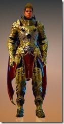 bdo-void-article-warrior-costume-10