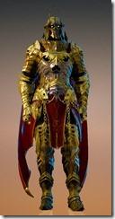 bdo-void-article-warrior-costume-9