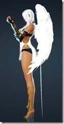 bdo-kibelius-dark-knight-costume-2