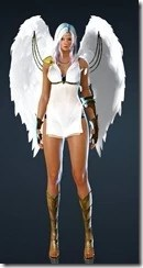 bdo-kibelius-dark-knight-costume-6