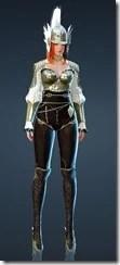 bdo-arendo-valkyrie-costume-6