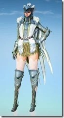 bdo-crown-eagle-costume-sorc
