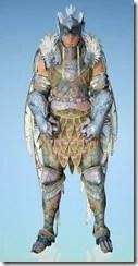 bdo-crown-eagle-costume-striker-11