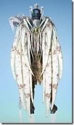 bdo-crown-eagle-costume-wizard-12
