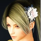 bdo-snow-flower-hair-ornament-2