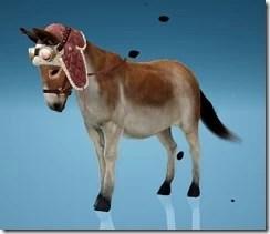Donkey Clip-Clop Gear Champron